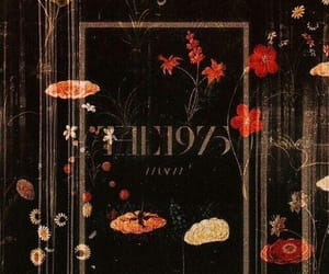 the 1975, dark, and flowers image