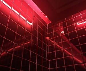 neon, red, and lights image