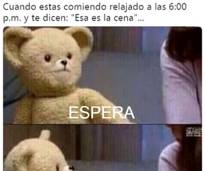 frases, memes, and tumblr image