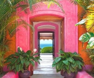 pink, summer, and mexico image