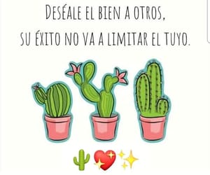cactus, quotes, and exito image