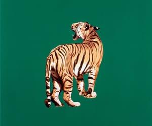 tiger, green, and animal image