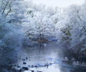 winter, blue, and frost image