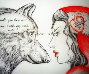 red, love, and wolf image