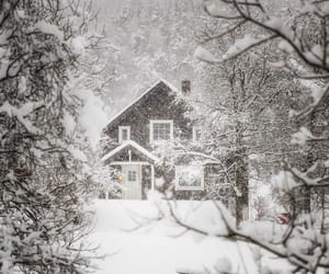 cold, outdoor, and snow image