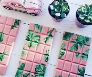 cactus, candy, and candy bar image