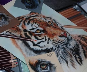 drawing, tiger, and amazing image
