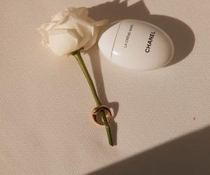 chanel and rose image