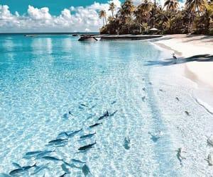 blue, inspo, and beach image