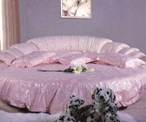 baby pink, bed, and silk image