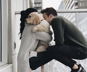 dog, couple, and love image