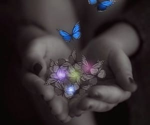 butterflies, dreamy, and lights image