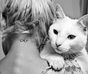 black and white, girl, and meow image