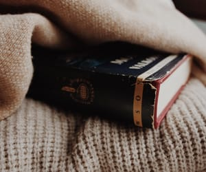 aesthetic, bookish, and literature image