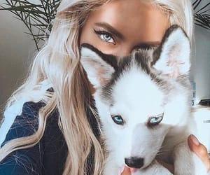 girl, dog, and animal image