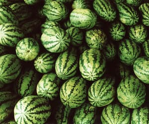 fruit, watermelon, and green image