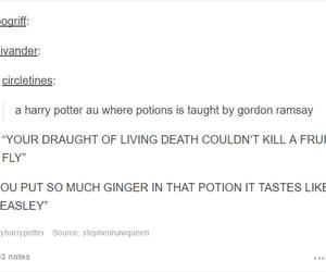 funny, gordon ramsay, and harry potter image
