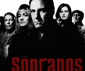 family and the sopranos image