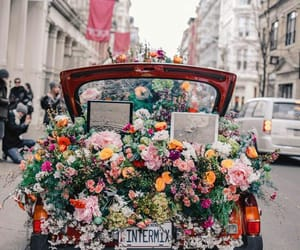 flowers, car, and beautiful image