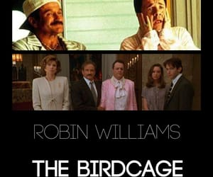 robin williams and the birdcage image