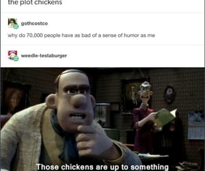 chickens, funny, and hilarious image