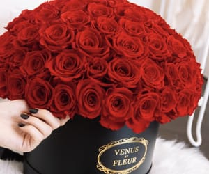 bouquet, flowers, and gorgeous image