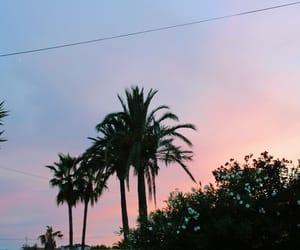 ciel, palmier, and paradise image