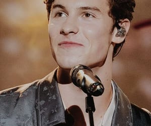 concierto, singer, and shawn mendes image