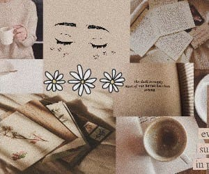 header, aesthetic, and brown image
