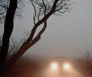 car, fog, and gothic image