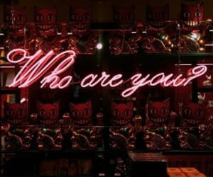aesthetic, red, and neon sign image