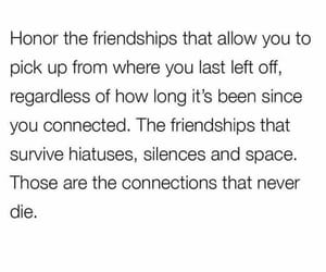 connected, connections, and friendship image