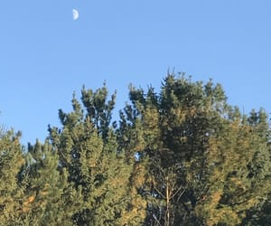 blue, moon, and day image