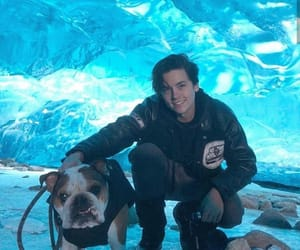 puppt, cole sprouse, and ♡ image