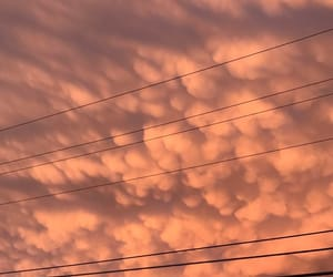 aesthetic, power lines, and blush image