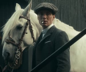 aesthetic, horse, and peaky blinders image