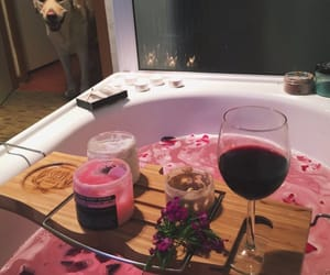 pink, bath, and dog image