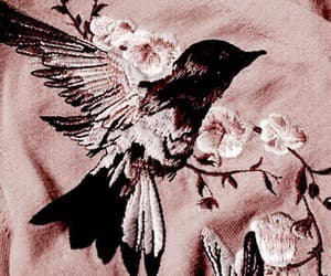 bird, aesthetic, and rose gold image