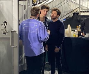 los angeles, niall horan, and shawn mendes image