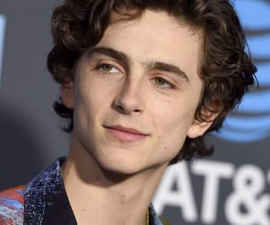 beautiful boy, timothée chalmet, and call me by your name image