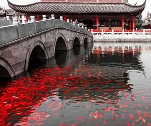 japan, aesthetic, and red image