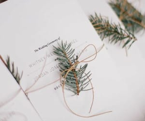 wedding and winter image