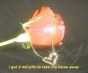 grunge, rose, and sad image