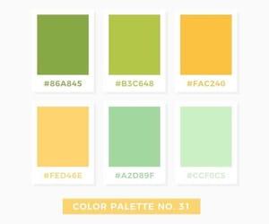 citrus, design, and palette image