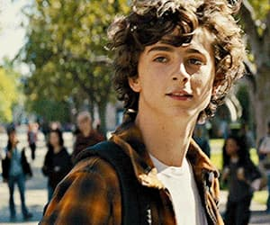 beautiful boy, handsome, and timothee chalamet image