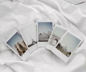 polaroid, white, and aesthetic image