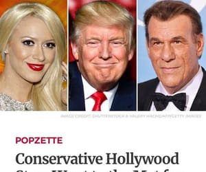 hollywood, truth, and conservative image