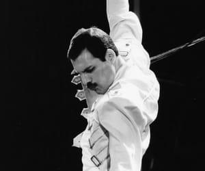 Freddie Mercury, funny, and iconic image