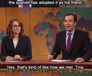 funny, jimmy fallon, and saturday night live image