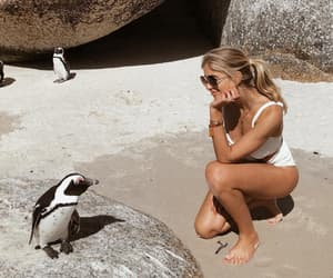 travel, beach, and cape town image
